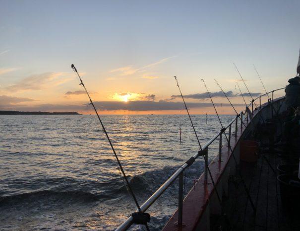 Aftentur på Øresund