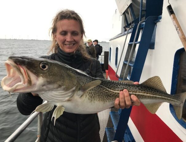 Lystfiskeri på Øresund